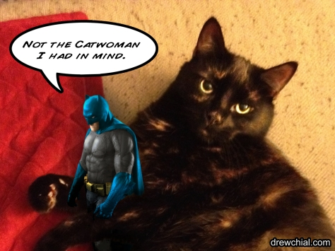 Catwoman steals herself a Batman