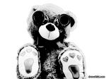 Bear Lenses